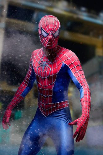 Spider-Man (Foto: Stark-Entertainment)